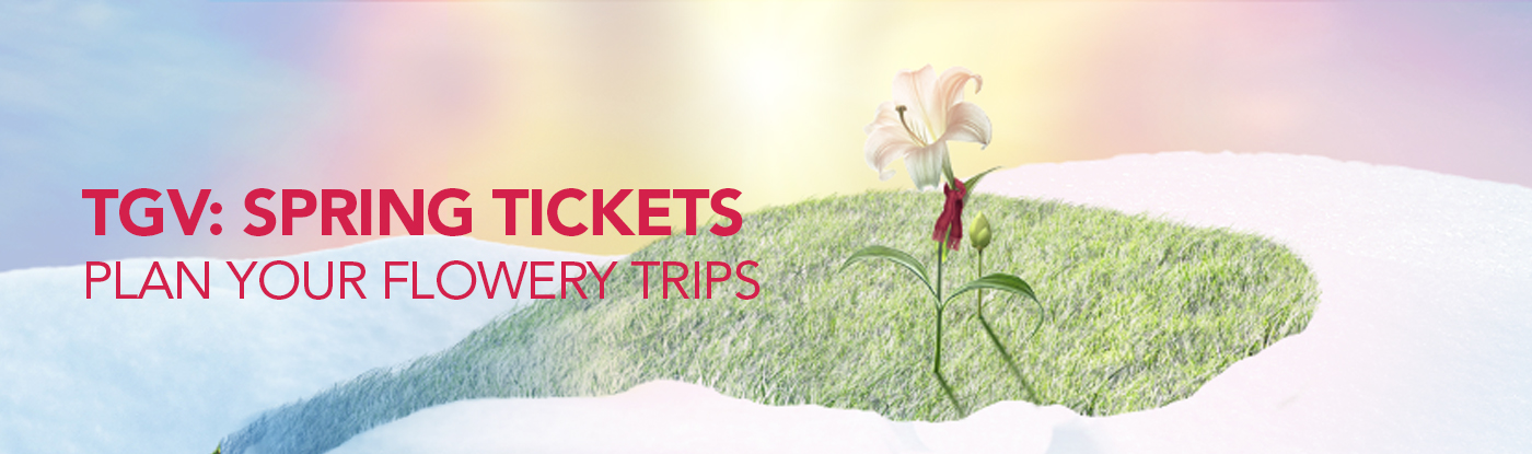 TGV Spring Tickets
